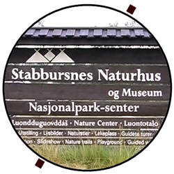 Stabbursnes